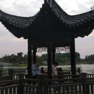界首植物园旅游景点攻略图
