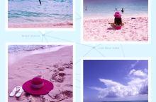 #激情一夏#水菱环球之旅の哈勃岛粉红沙滩