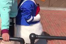 迪士尼最受欢迎的鸭鸭来惹