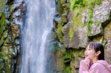 「私藏周末游圣地」去溪口雪窦山赏花看瀑布