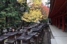 奈良,一座安静的日本小城。