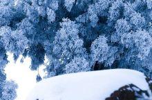 苍山负雪千岩一素,雪霁庐山宛如童话世界