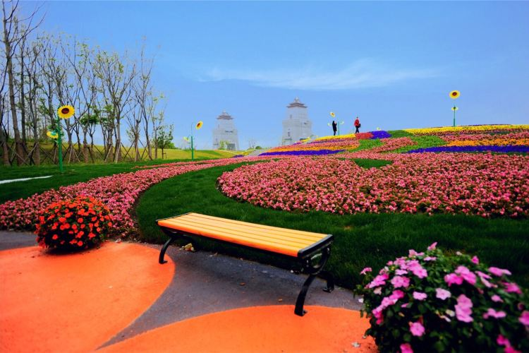 Marco Polo Flower World4