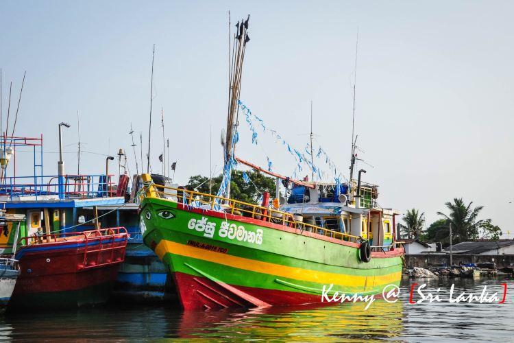 Negombo Lagoon3