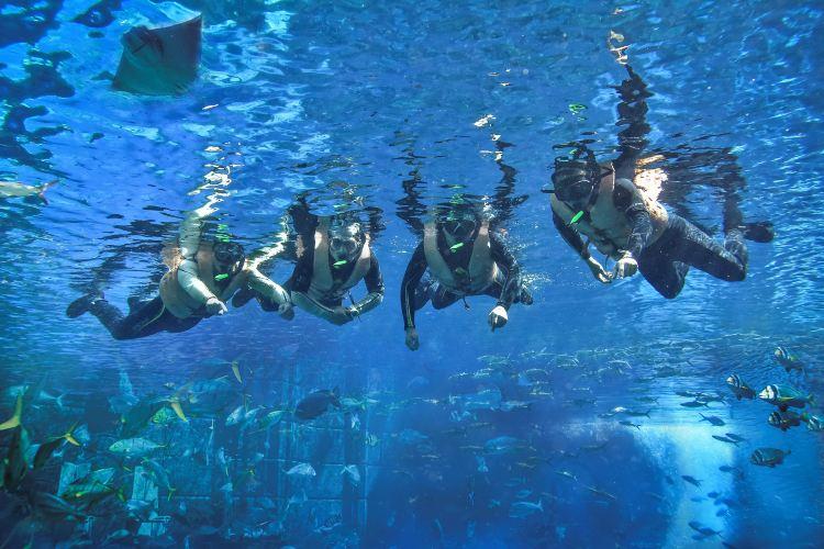 亞特蘭蒂斯失落的空間水族館2