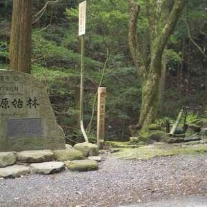 春日山原始林旅游景点攻略图