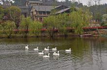 度假武汉野村谷,亲山近水的乡野田园,走进醉人的春天