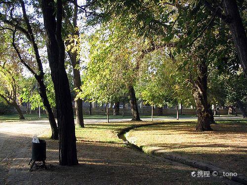 Parque Quinta Normal1