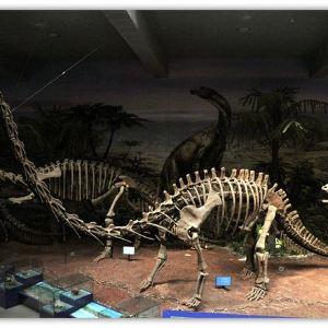 云南禄丰恐龙国家地质公园旅游景点攻略图