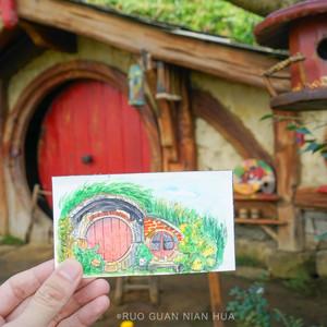 奥克兰游记图文-【带着手绘去旅行】漫游奥克兰,在南半球过夏天!