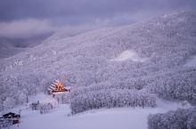 日本小众景点| 满足对冬天的幻想,树冰里滑雪雪地泡温泉 这次日本东北之行最期待的就是去藏王滑雪看树冰