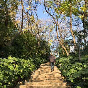 清凉山公园旅游景点攻略图