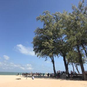 撒米拉海滩旅游景点攻略图