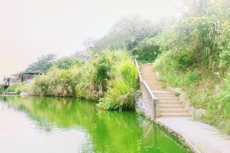 치둥 온천마을