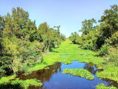 讓·拉菲特國家歷史公園和自然保護區