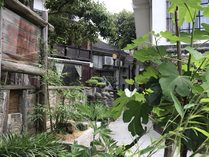 两日杭州青芝坞的静谧时光 – 杭州游记攻略插图47