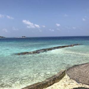 梦幻岛旅游景点攻略图