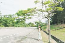 马来西亚旅行 | 东南亚最美的大学