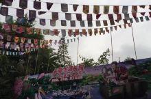 长隆飞鸟乐园是长隆集团建造的一个大型主题公园,占地面积达数千亩的公园里,生活着各种珍稀的湿地鸟类,我