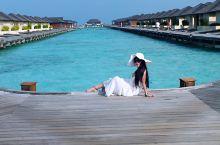 「马尔代夫」 马儿代夫  这里有蓝天、碧海、沙滩、森林…