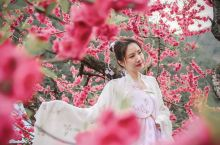 穿着汉服去赏花,如何拍出仙女般的美照? 又是一年最美赏花时,以花衬托,融入花海之中,那么汉服赏花照怎