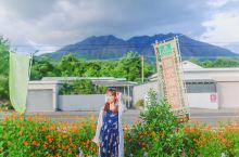 樱岛,这座名字听着很浪漫的小岛,其实是一座活火山,至今火山活动仍十分活跃,据说时不时就会小喷一下,那