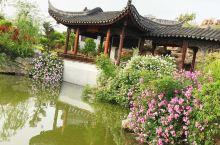 河南邓州花洲书院美景