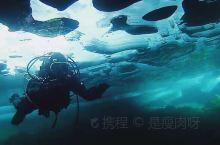 你感受过零下40度的极寒吗,呼出气立马在睫毛结冰 我最酷的事莫过于在极寒之地体验冰潜水 震撼的视觉体