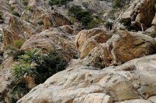几万年前的奇迹!贺兰山岩画!