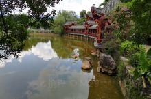 大水塘边榕树下是旅游休息的好地方