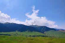 到达琼库什台前的最后一段路程,依我看来,是高山草甸和雪岭云杉共同主演的,一部自然风光大片。 高山草甸