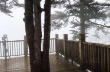 西岭雪山风景(七)日月坪景区 西岭雪山日月坪景区海拔高度为3250米以上,景区处原始森林中,天气好的