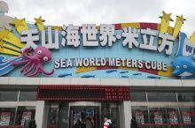 米立方是什么?是个水世界,就是孩子们非常喜欢的室内水乐园,在天津津南区小站镇这里,外观很有特色,里边