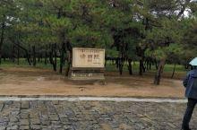 清西陵,泰陵,是雍正皇帝的陵,总体建筑设计好,雕工细,基本保持了原貌。