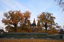 北京石刻艺术博物馆位于北京市海淀区西直门外白石桥五塔寺村24号,毗邻动物园。馆舍位于明成祖永乐皇帝敕