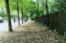 走在哥德堡的植物园里