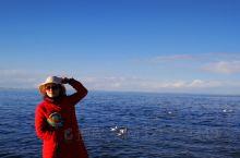 青海湖带给你的可不单单是心旷神怡,以往的概念都是人往高处走水往低处流,在这海拔3196米的地方,让你