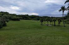 鹅銮鼻国家公园是一个沿海很大的公园,有草坪,有海岸,还有灯塔。台湾一年四季常绿,灯塔是它的标志,而整