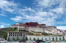 总觉得西藏是我长久以来的精神故乡,终于看到神圣的布达拉宫,第一眼竟然心中无波无澜,只是凝视,久久地凝