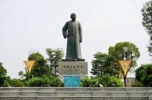 惊讶!这位儒医的真实身份竟然是叶问的师傅的师傅,而李小龙更是他的曾徒孙 《叶问1》、《叶问2》、《叶