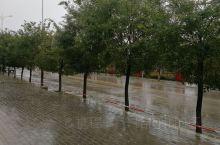 雨中的街道