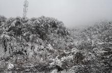 西岭雪山滑雪场   窗含西岭千秋雪,门泊东吴万里船 西玲雪山的云海很美 西玲雪山的索道很陡 西玲雪山