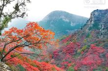 山上五颜六色的确不错,是一种美景!
