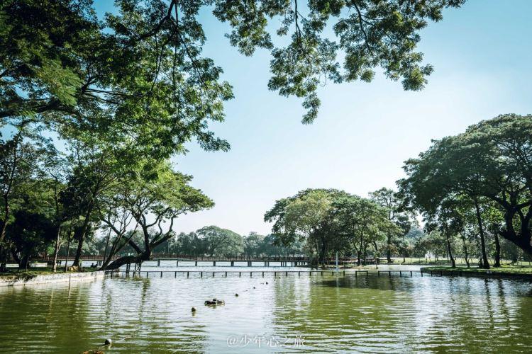 Kandawgyi Lake4