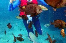 潜入海底看那蓝色世界,这个梦想在马来西亚热浪岛的海洋国家公园实现!  提起马来西亚著名的潜水圣地,很