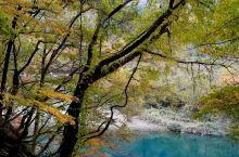 秋天必访的仙北市赏枫景点:抱返溪谷  位在田泽湖、角馆附近,总长10公里的「抱返溪谷」是仙北市出名的