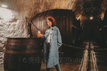 捷克|捷克最大的酿酒厂皮尔森  到捷克,必须做的一件事情就是喝啤酒!捷克的啤酒和德国的啤酒一样,也是