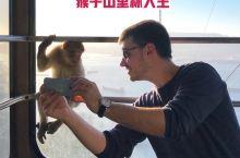 【小众秘境|去看直布罗陀的猴山猴海】  最初在地理课本上得知直布罗陀这个地方,第一印象就是名字好可爱