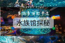 来看加拿大最长的海底隧道看鲨鱼 瑞普利水族馆(Ripley's Aquarium of Canada