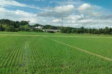 """从东京坐""""长鼻子""""新干线到秋田,第一次坐新干线,跟高铁差不多,每条线路的名字都有地区特色,到秋田的就"""